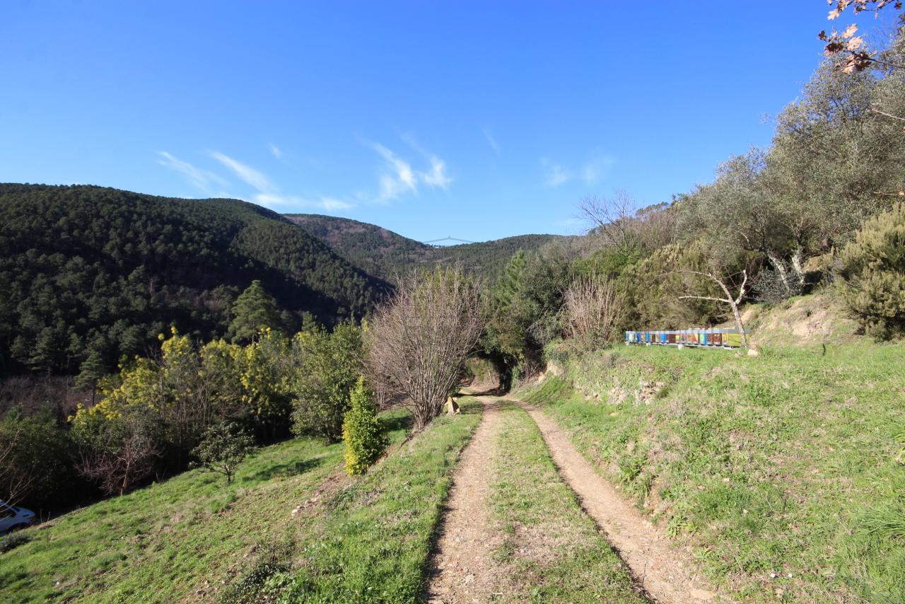 Casa colonica Capannori Castelvecchio di Compito IA00372 img 6