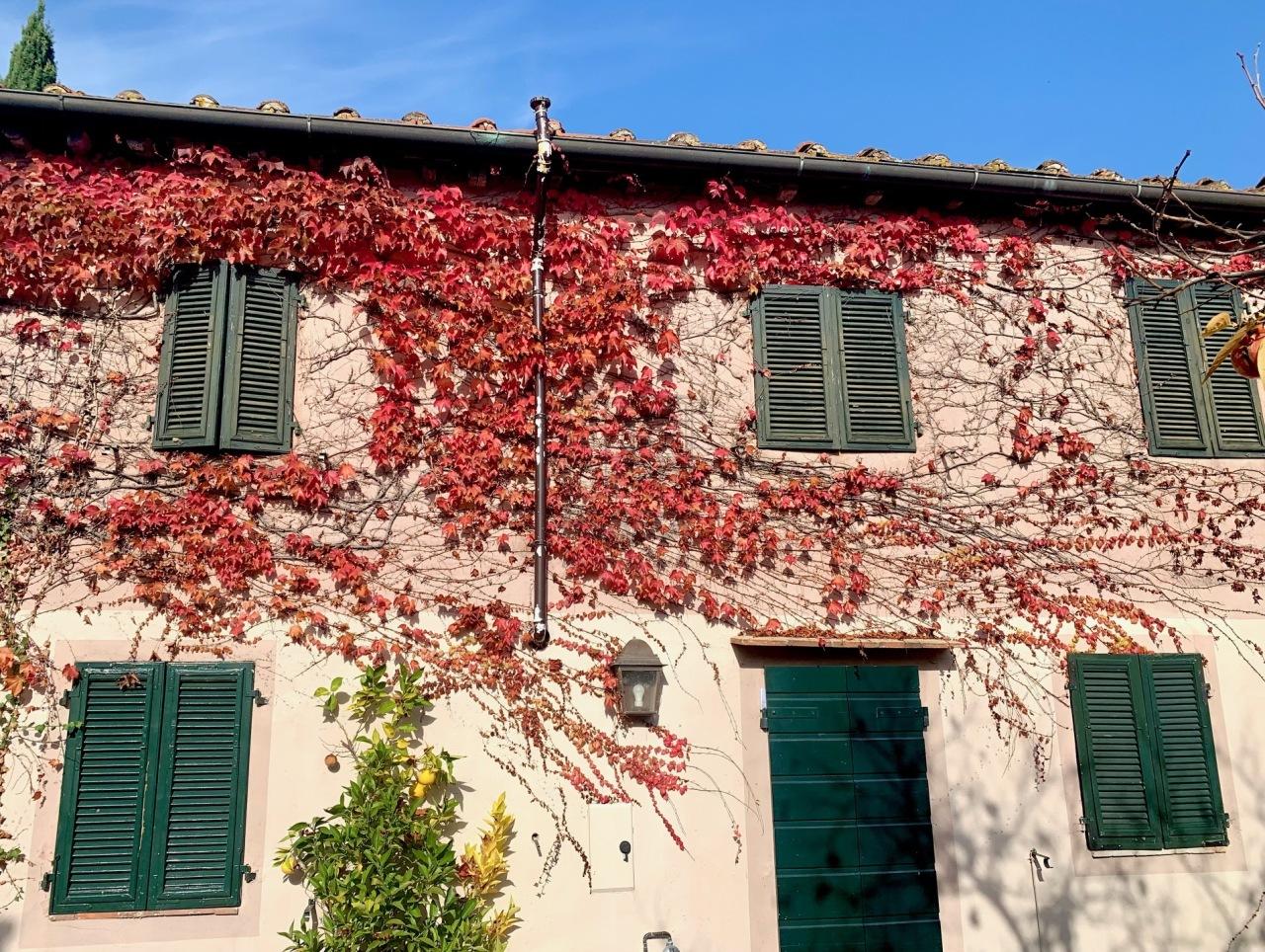 Casa colonica Lucca Monte S. Quirico IA03418 img 4