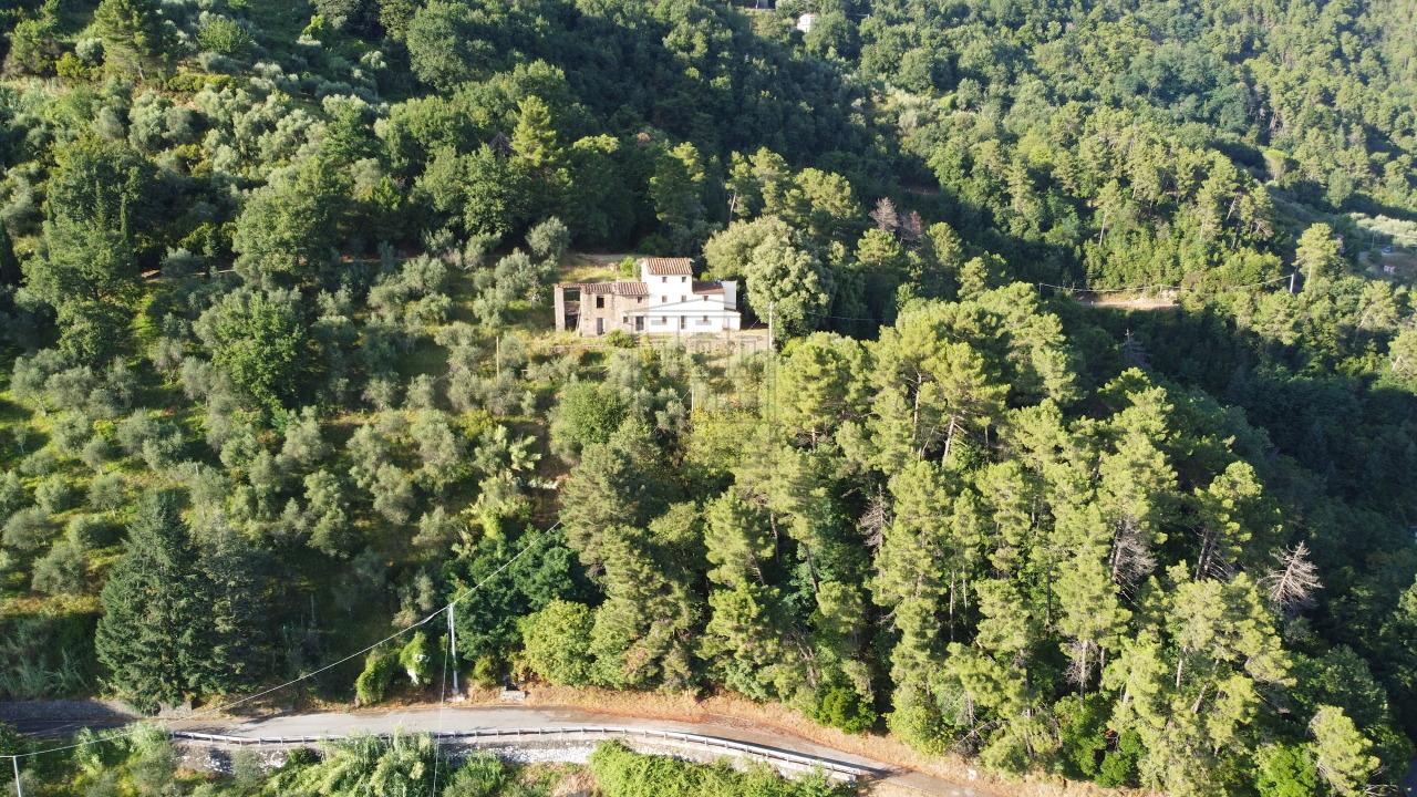 Casa colonica Lucca Ponte a Moriano IA00534 img 53
