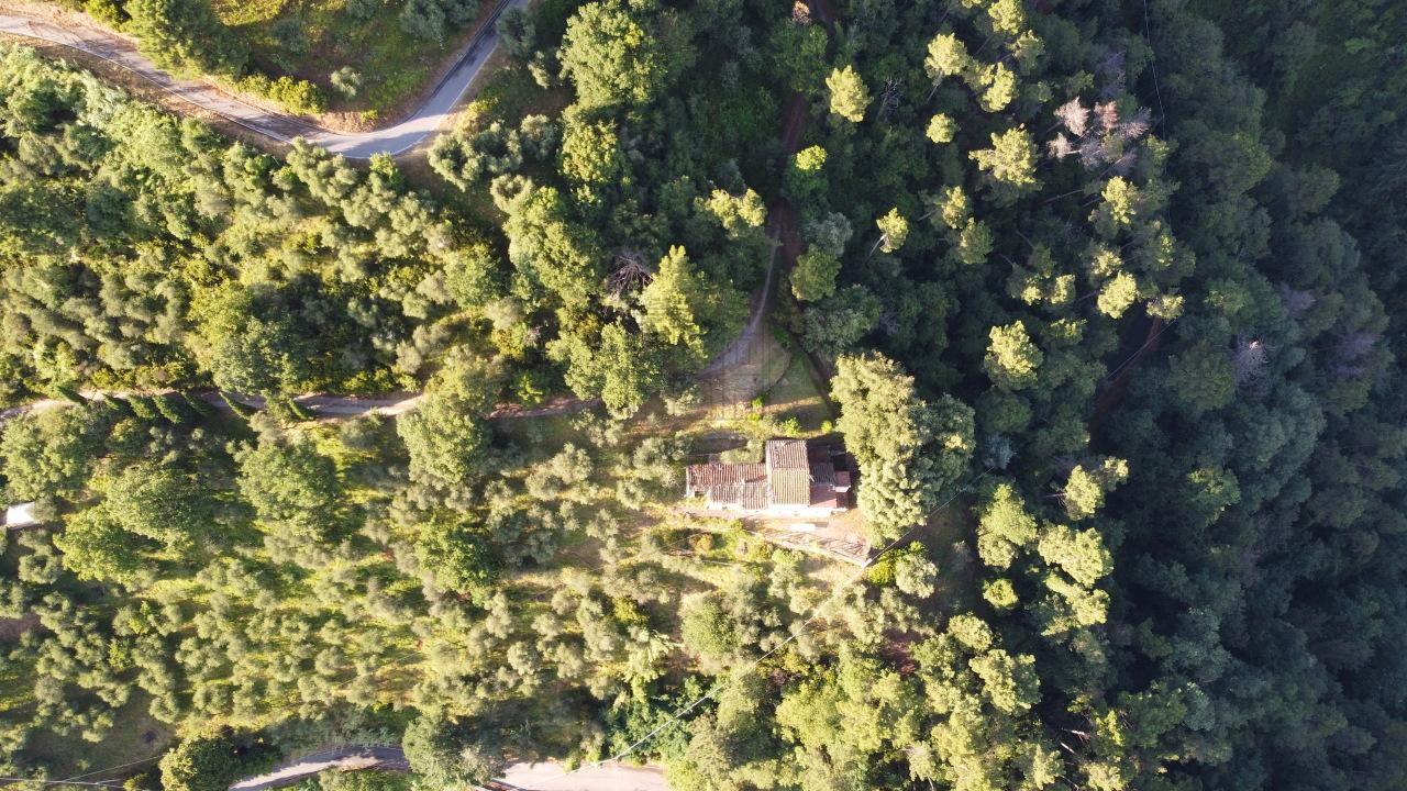 Casa colonica Lucca Ponte a Moriano IA00534 img 42