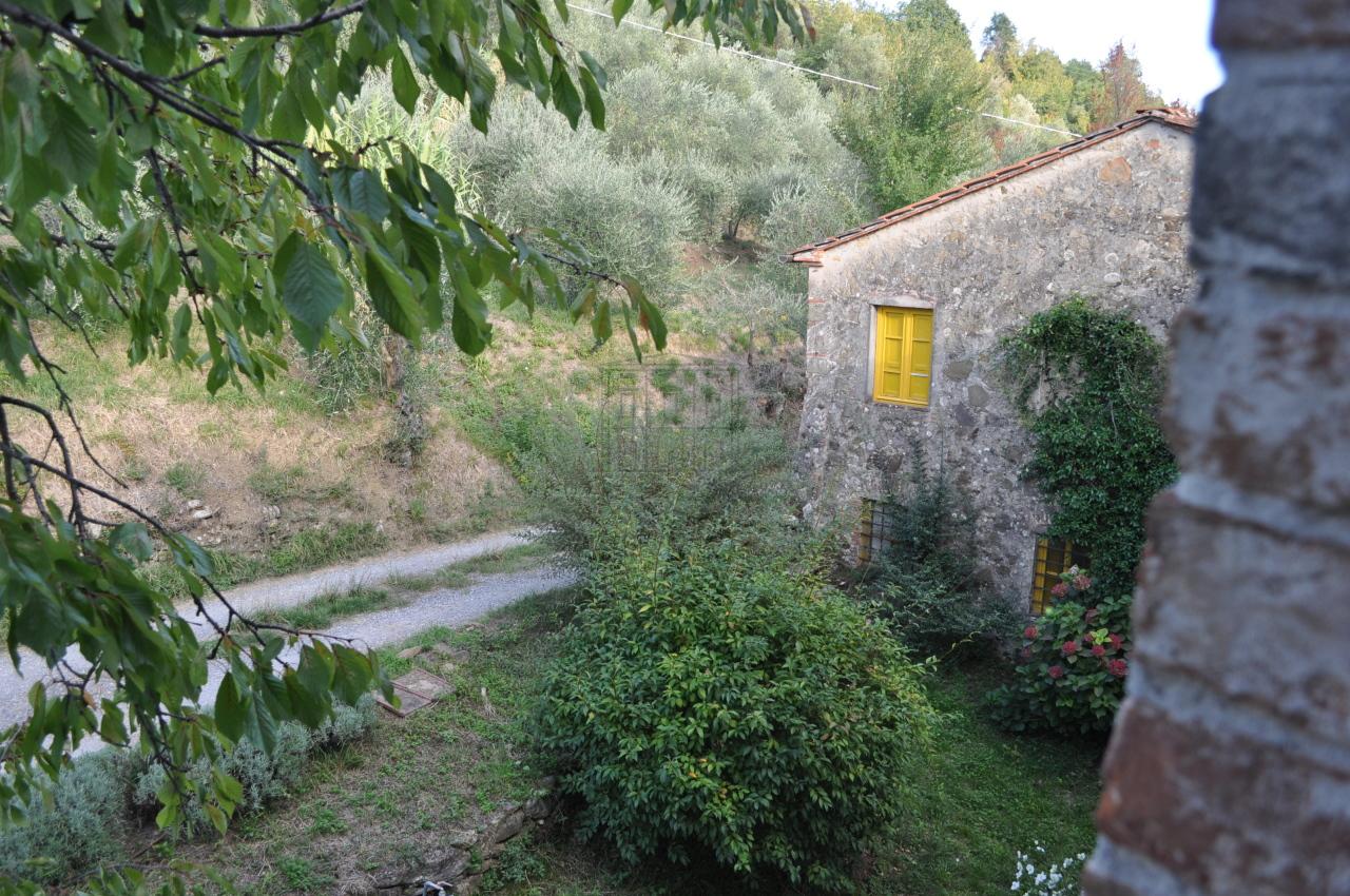 Casa colonica Lucca S. Michele di Moriano IA03149 - b img 25