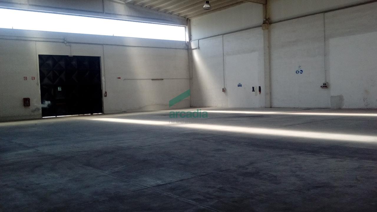 Capannone - Industriale a zona industriale, Bitonto Rif. 10829229