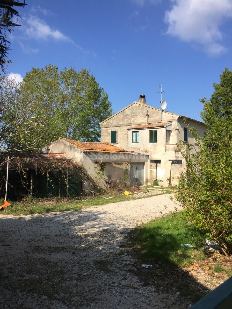 Rustico / Casale in affitto Rif. 10034592