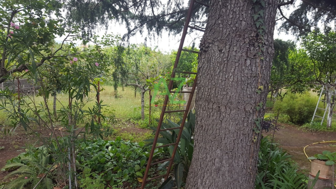 Agricolo - Frutteto a Aci Sant'Antonio Rif. 8149550