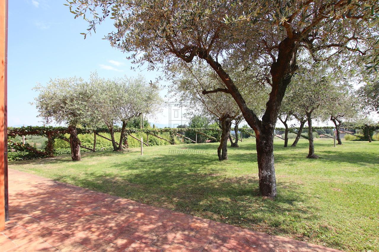 Villa singola Capannori IA01790 img 57
