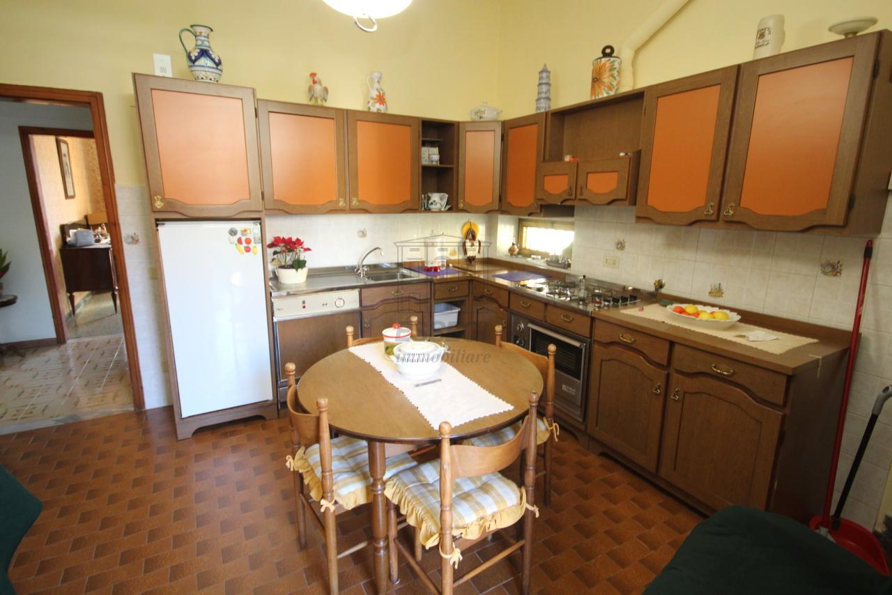 Villa singola Lucca S. Donato IA01631 img 4