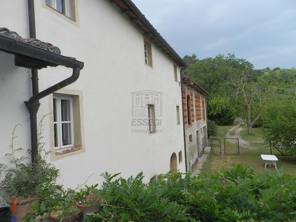 Casa colonica Lucca S. Macario IA03369 img 2