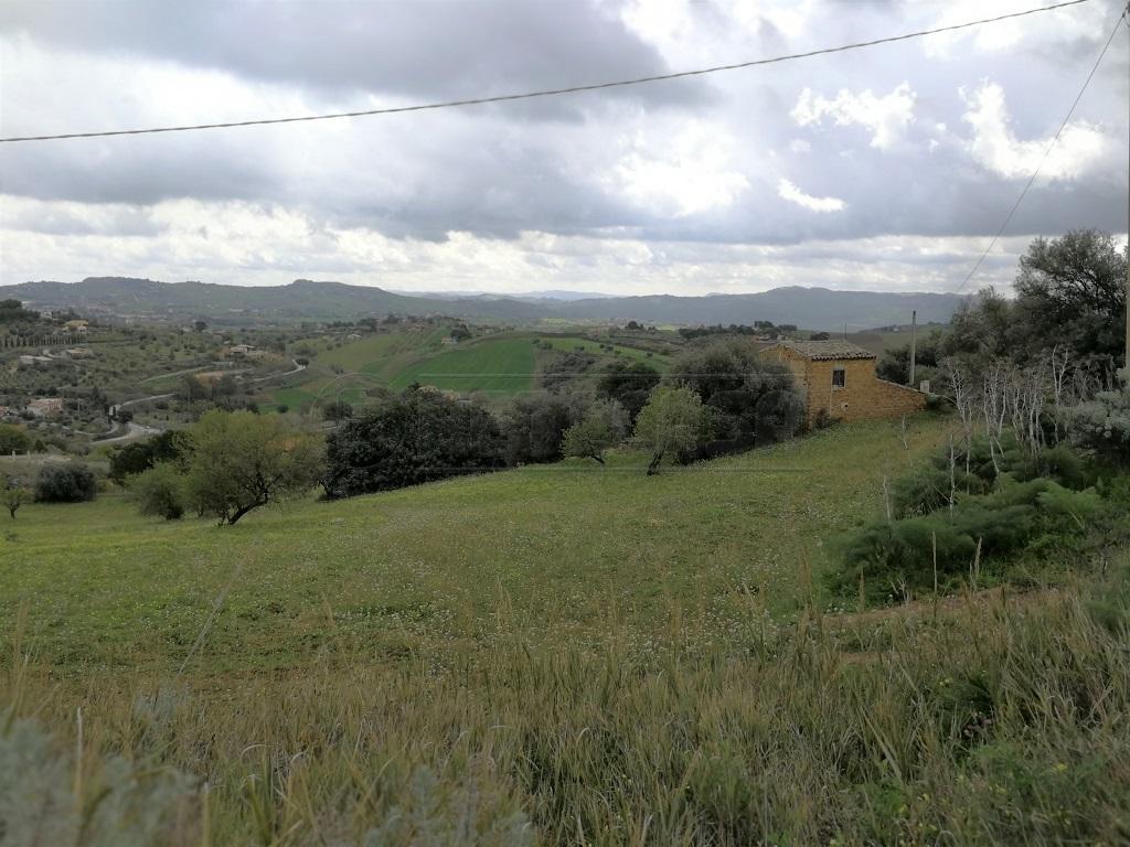 Agricolo - Uliveto a Caltanissetta Rif. 5818548