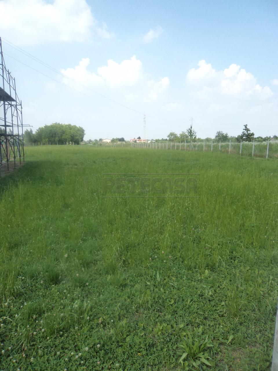 Terreno Agricolo in Vendita a Villanova di Camposampiero