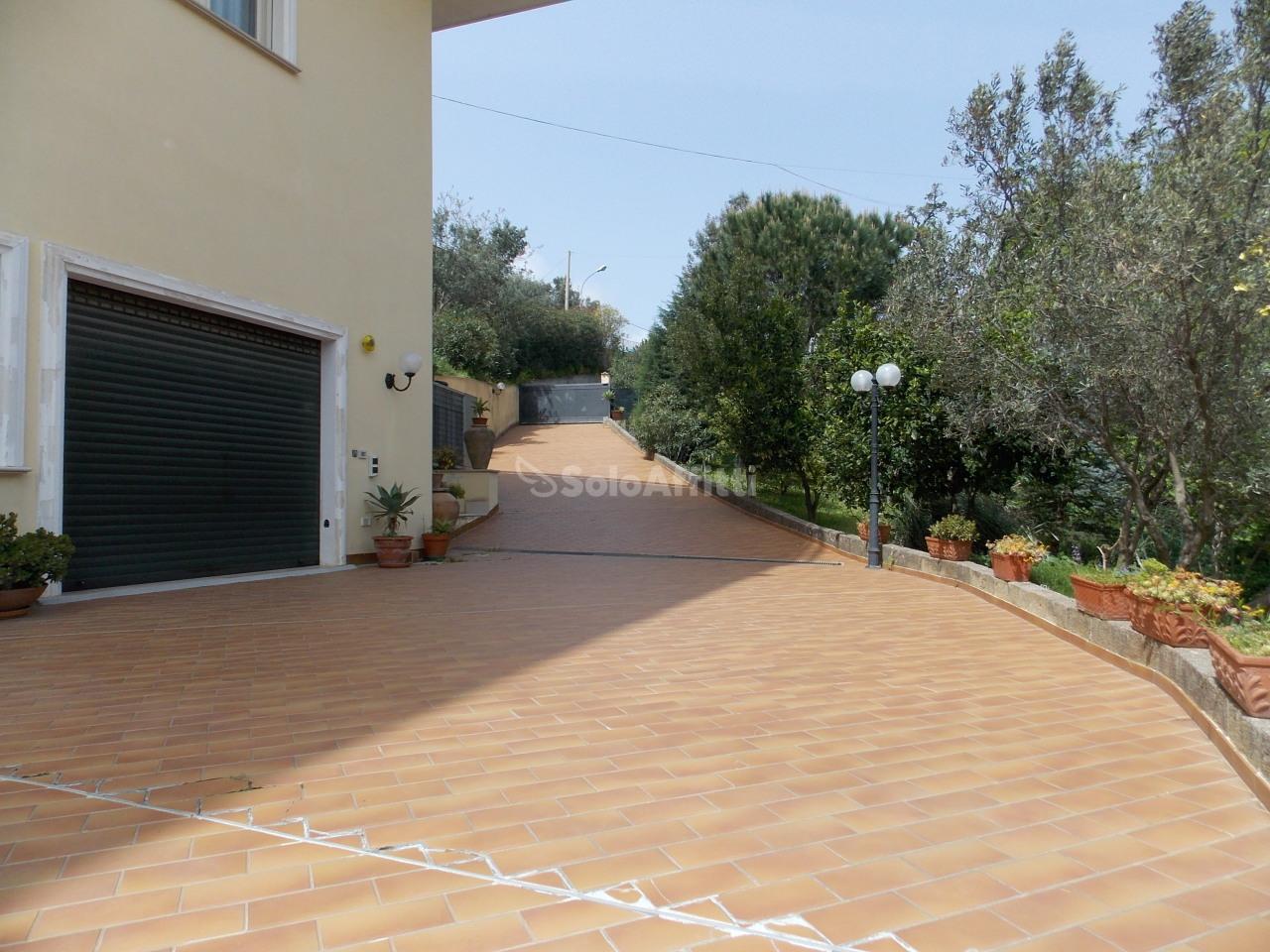 Fondo/negozio - 4 vetrine/luci a Siano, Catanzaro Rif. 4133835