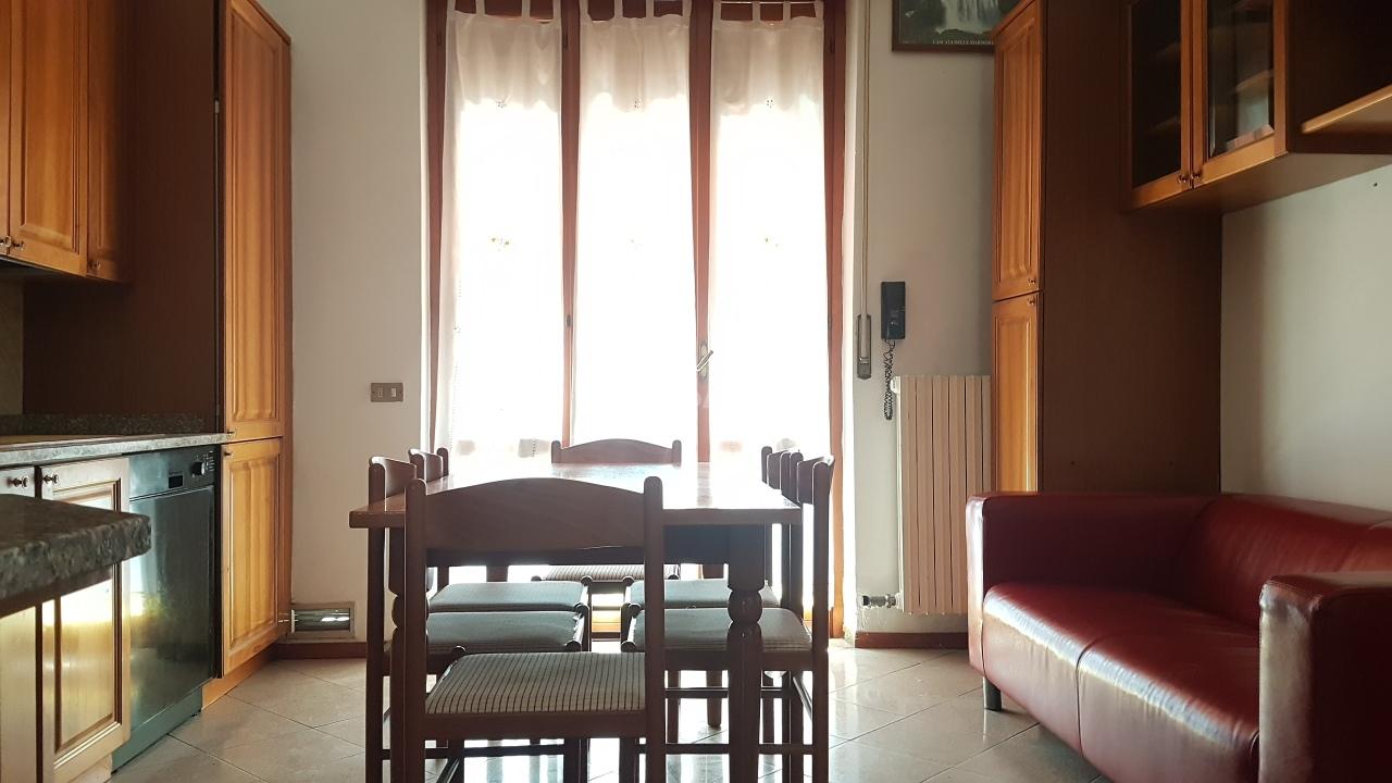 Trilocale ristrutturato in affitto Rif. 7265495