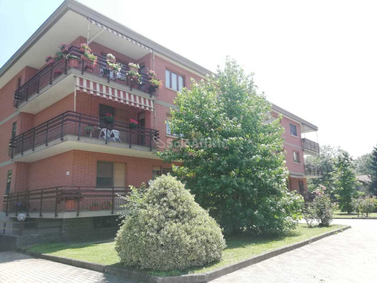 Trilocale in ottime condizioni in affitto Rif. 10445559