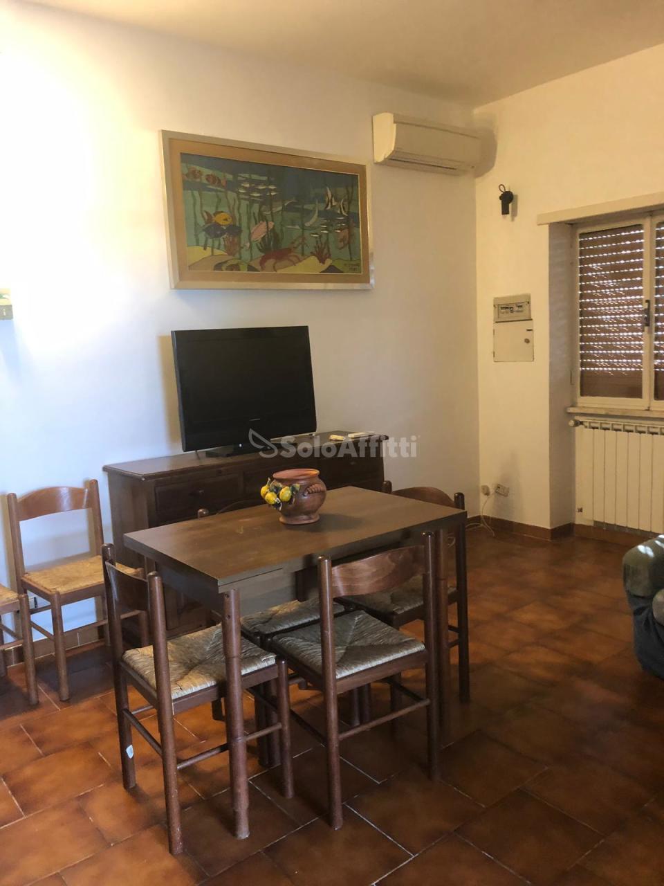 Trilocale in buone condizioni arredato in affitto Rif. 10100678