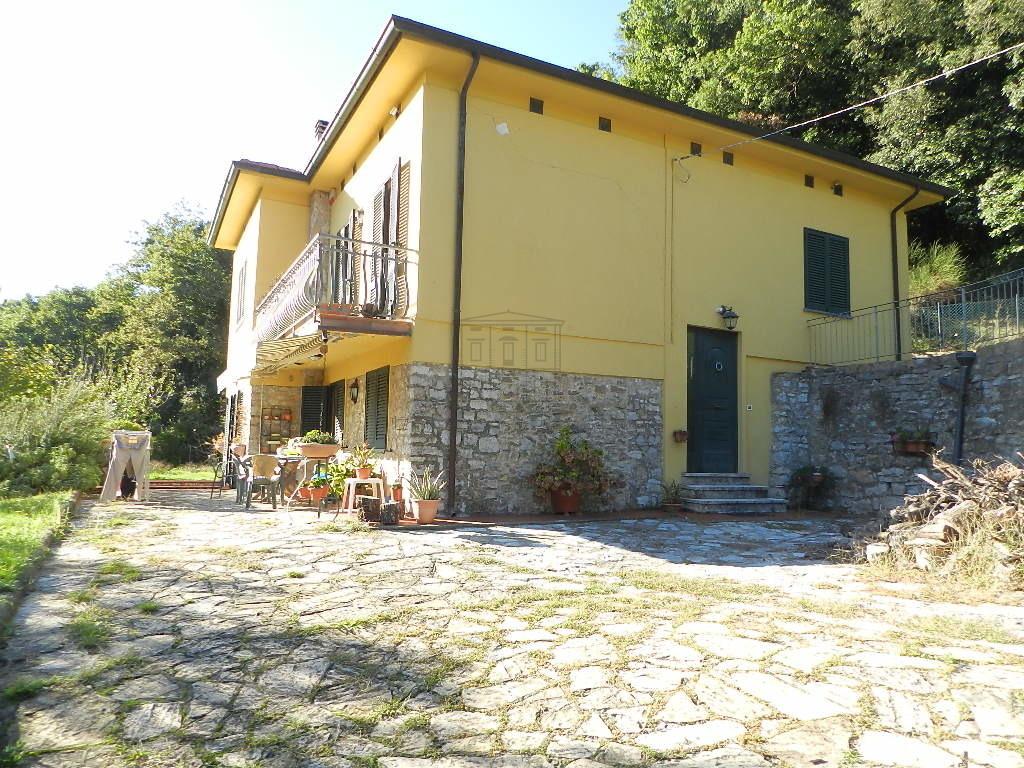 IA03430 Lucca Chiatri