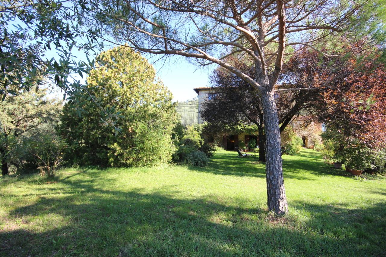 Casa colonica Lucca S. Michele di Moriano IA03149 - b img 8