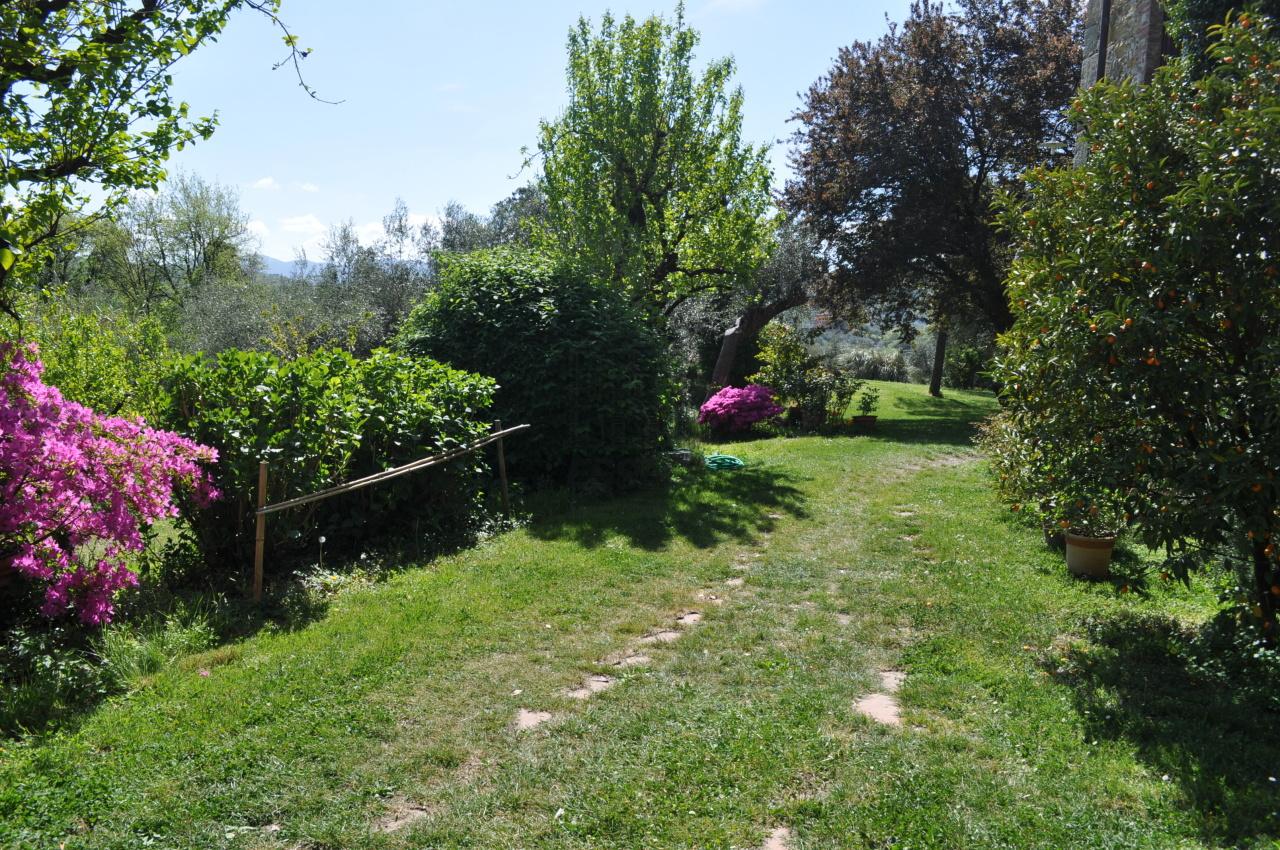 Casa colonica Lucca S. Michele di Moriano IA03149 - b img 32