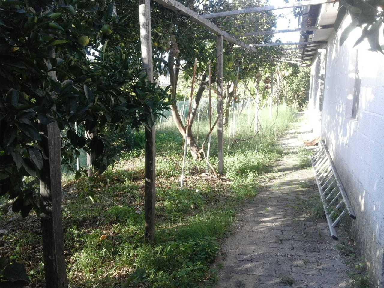 Terreno Agricolo in vendita a Reggio Calabria, 9999 locali, prezzo € 55.000 | PortaleAgenzieImmobiliari.it