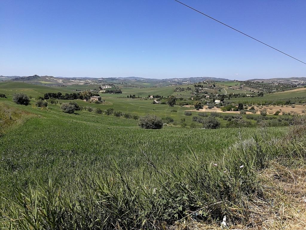 Agricolo - Seminativo a Caltanissetta Rif. 6657664