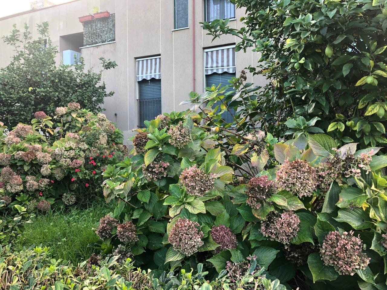 Appartamento in vendita a Sestri Levante, 3 locali, prezzo € 135.000   CambioCasa.it