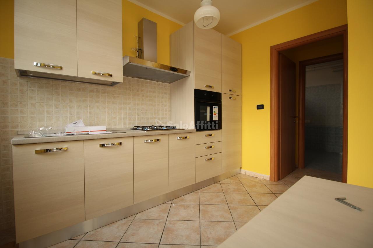 Bilocale in buone condizioni in affitto Rif. 11077233