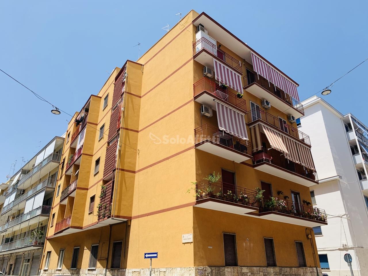 Trilocale in ottime condizioni in affitto Rif. 10445537