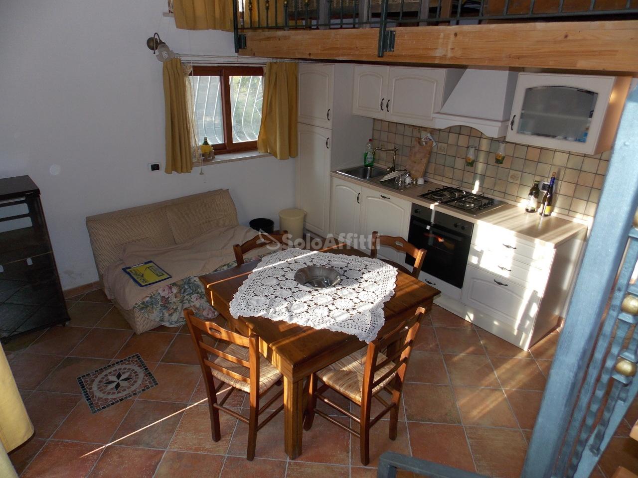 Monolocale in buone condizioni arredato in affitto Rif. 11077250