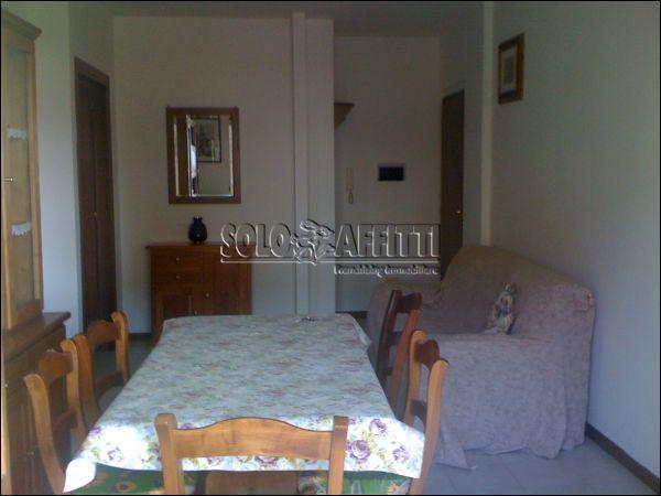 Bilocale da ristrutturare arredato in affitto Rif. 8884033