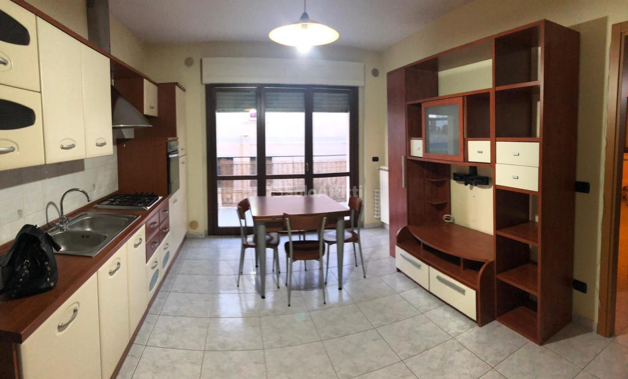 Bilocale in buone condizioni arredato in affitto Rif. 9239747