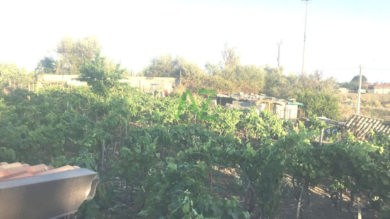 Agricolo - Vigneto a Tremestieri Etneo Rif. 7055143