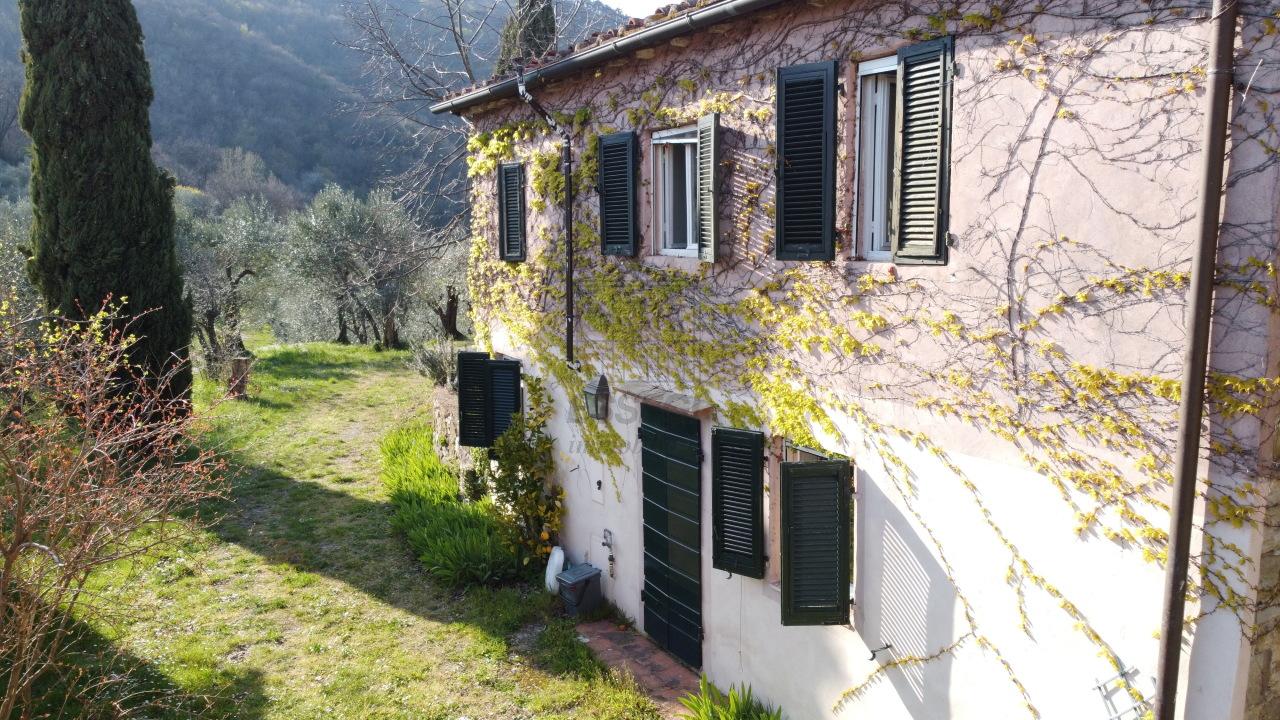 Casa colonica Lucca Monte S. Quirico IA03418 img 8