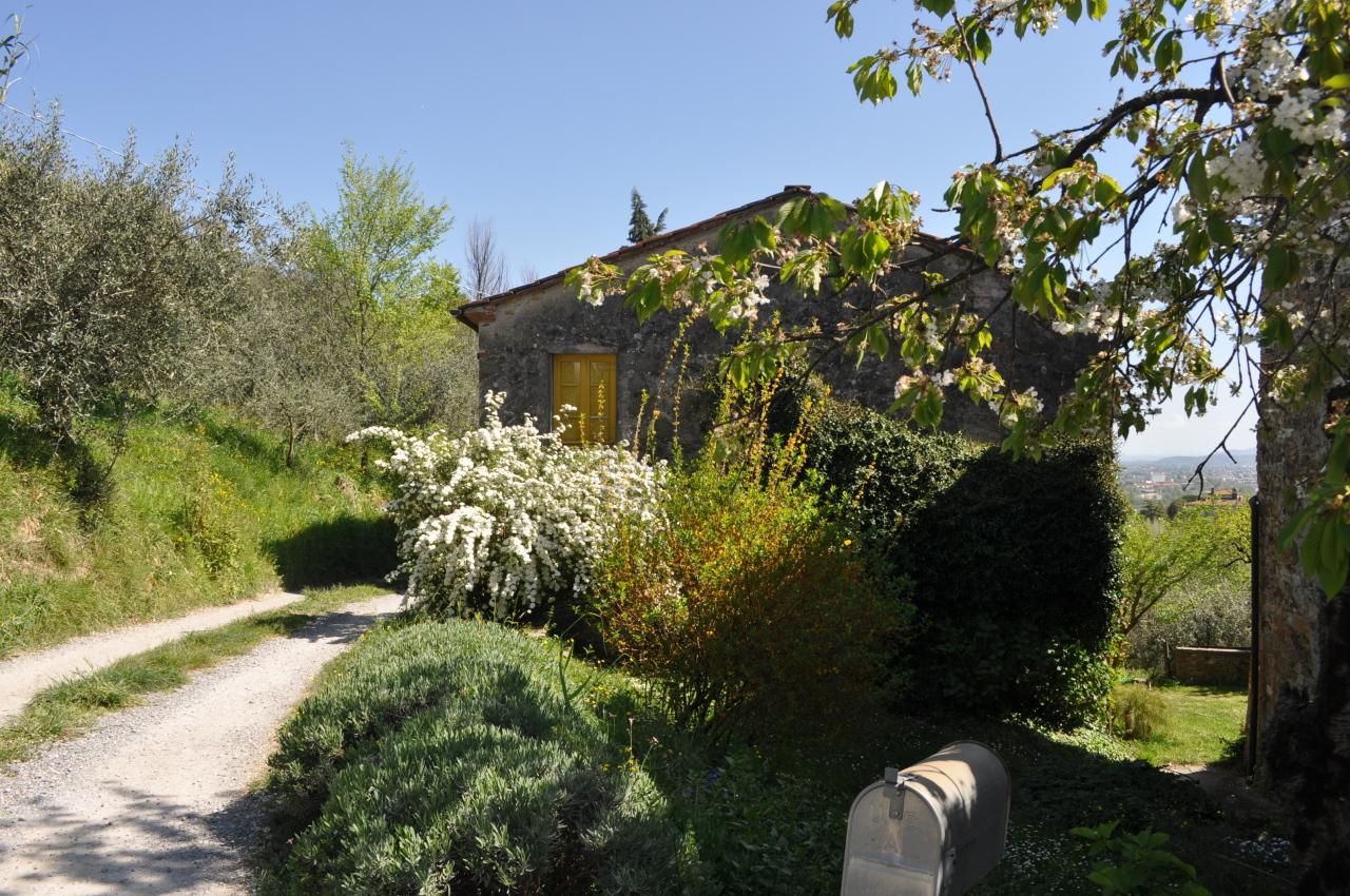 Casa colonica Lucca S. Michele di Moriano IA03149 - b img 4