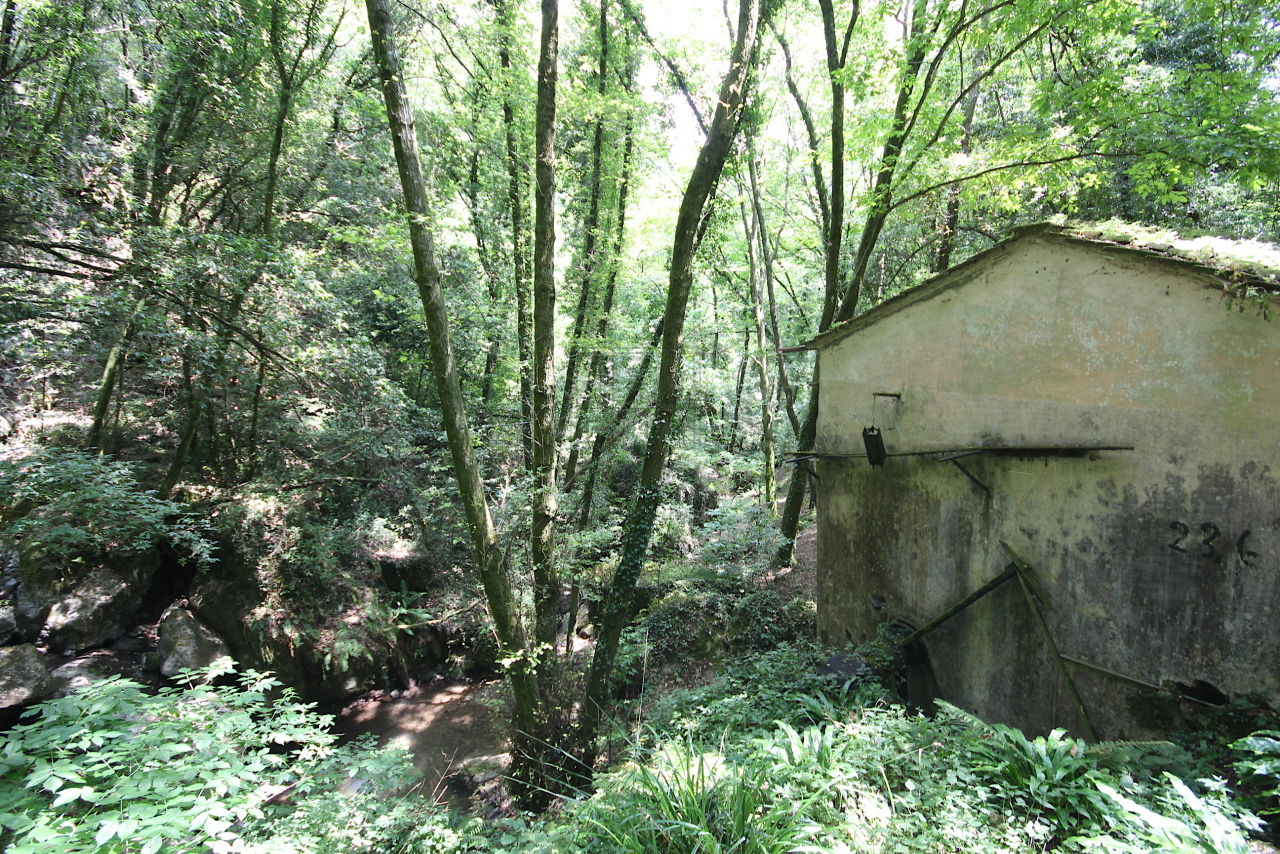 Casa colonica Camaiore IA03348-B img 20