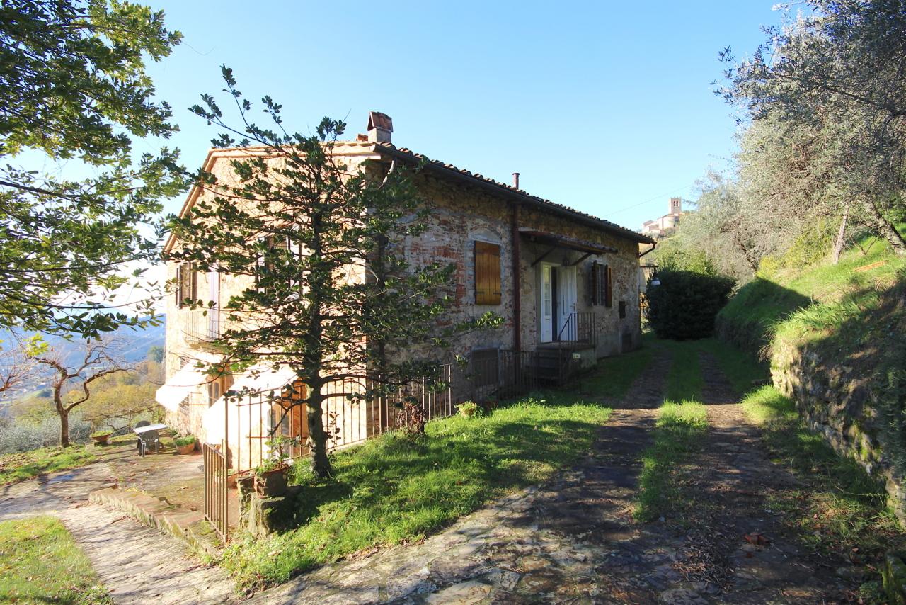 Casa colonica Lucca Cappella IA00223 img 2