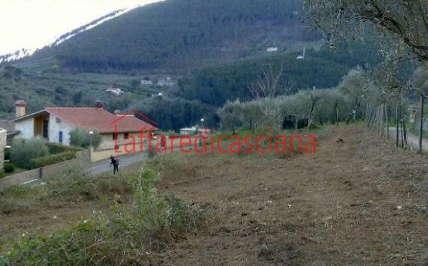 Terreno Agricolo in vendita a Buti, 9999 locali, prezzo € 160.000   CambioCasa.it