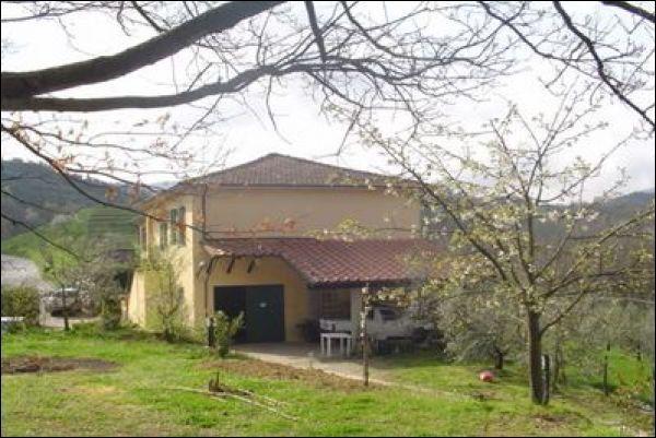 Ricettivo - Agriturismo a Fivizzano Rif. 9811308