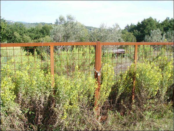 Terreno Agricolo in vendita a Pistoia, 1 locali, prezzo € 80.000 | CambioCasa.it