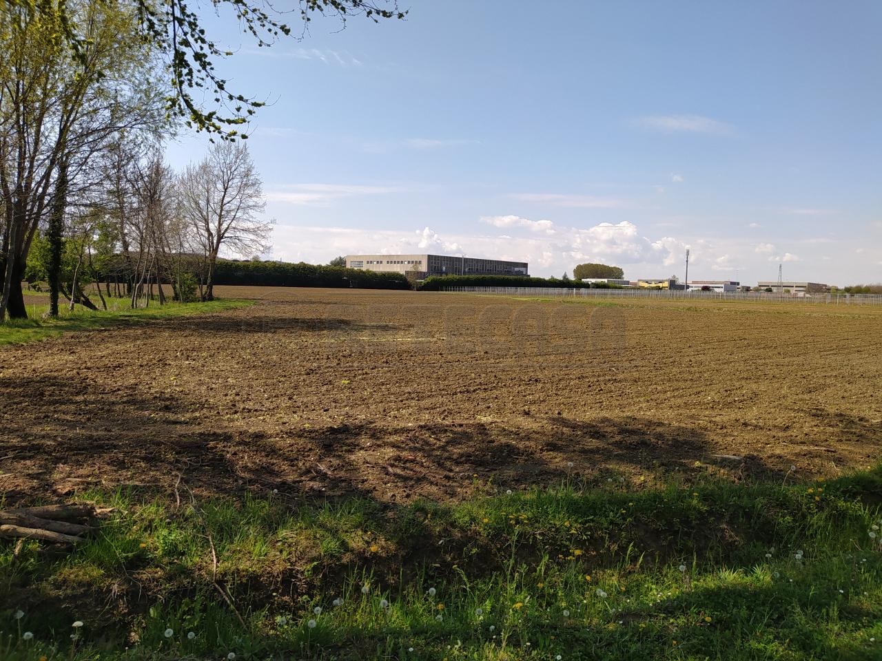 Terreno Agricolo in vendita a Casale sul Sile, 9999 locali, prezzo € 100.000 | CambioCasa.it