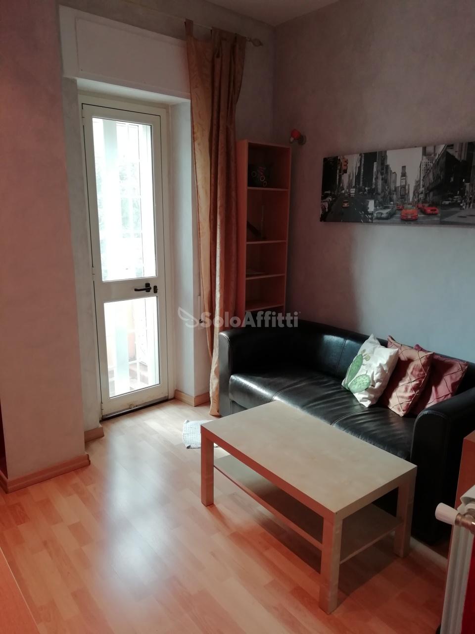 Bilocale in ottime condizioni arredato in affitto Rif. 11230149