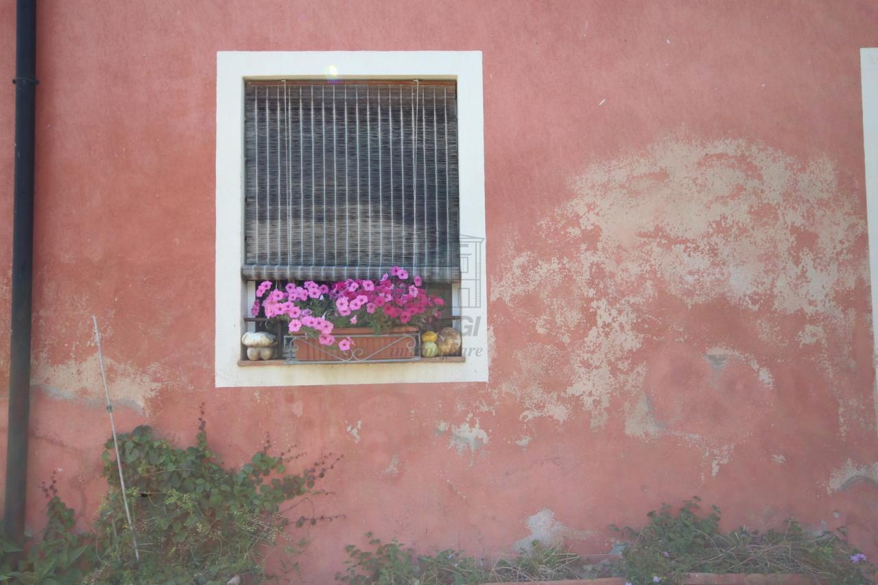 AC01557 Lucca Monte S. Quirico