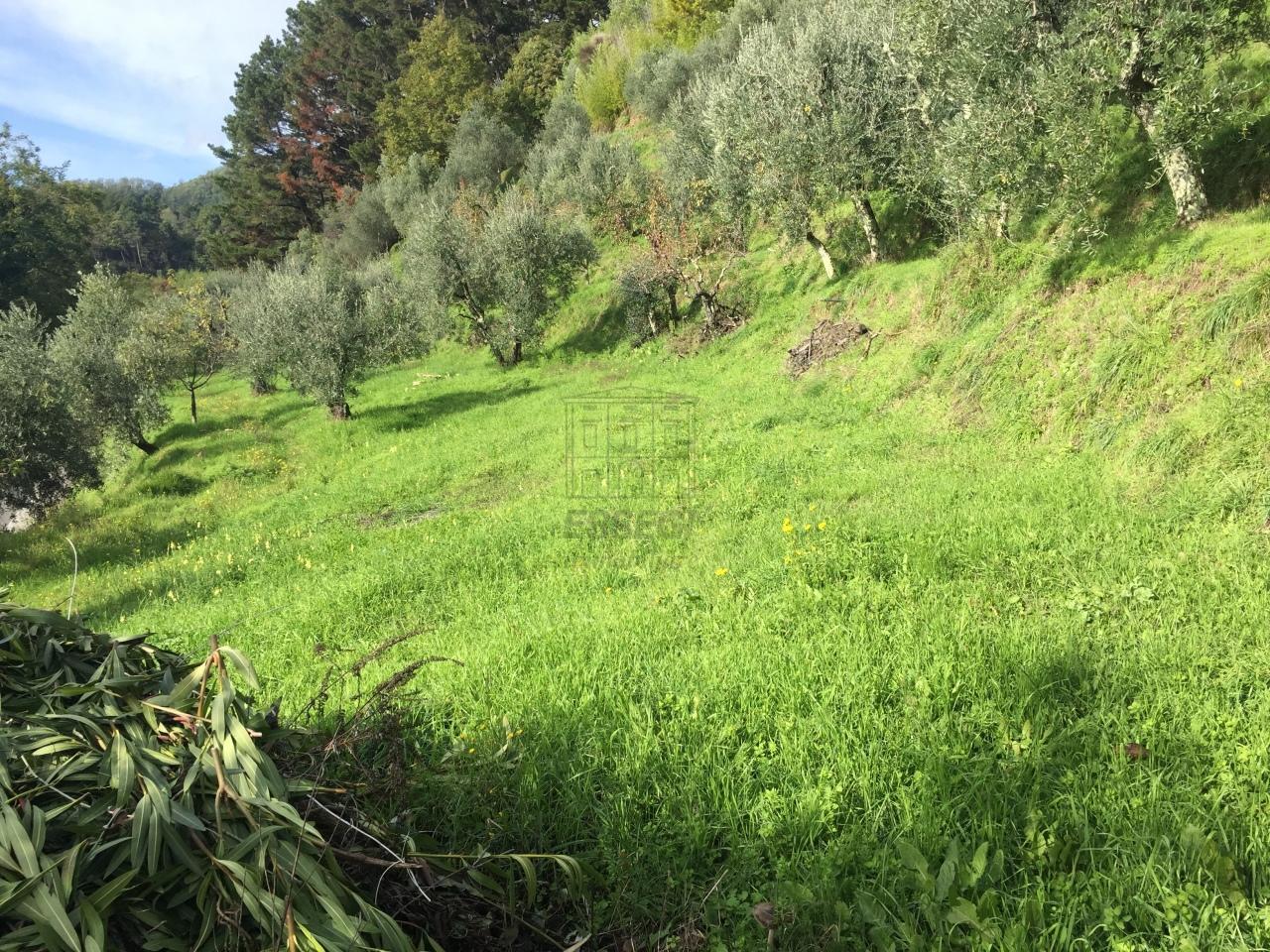 Casa colonica Capannori Matraia IA00065 img 27