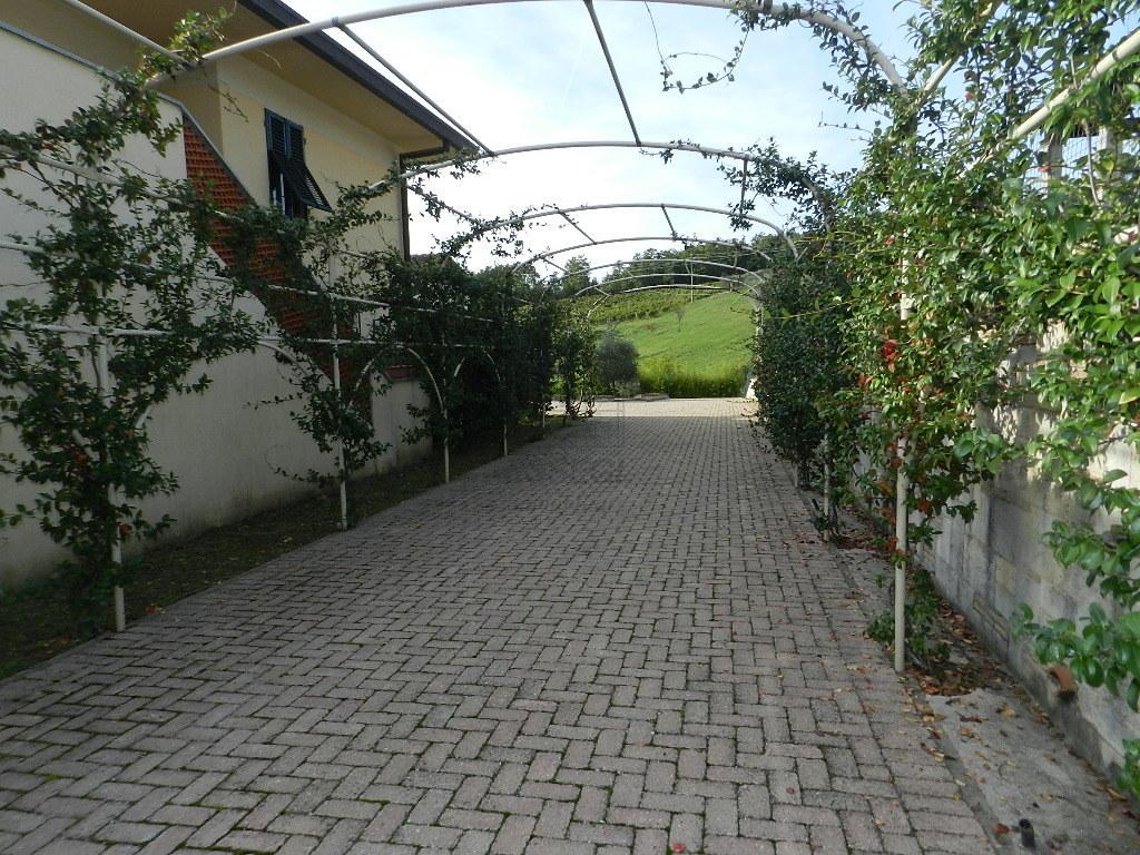 Villa singola Lucca S. Michele di Moriano IA01464-c img 2