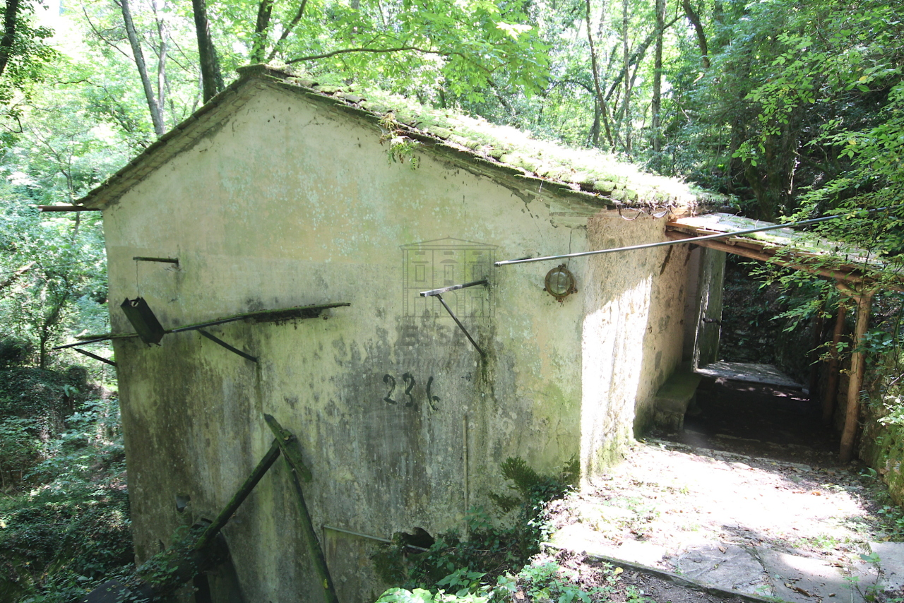 Casa colonica Camaiore IA03348 - B img 17