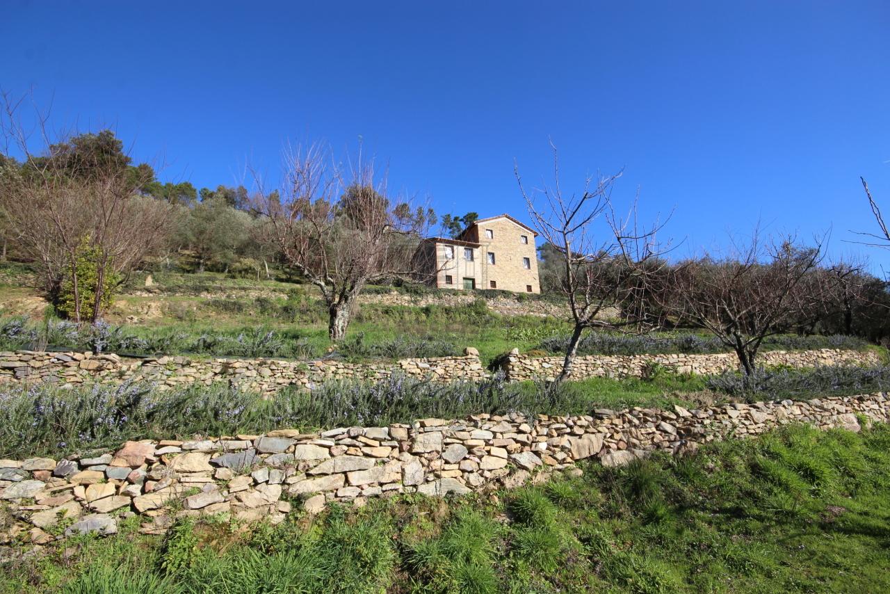 Casa colonica Capannori Castelvecchio di Compito IA00372 img 2
