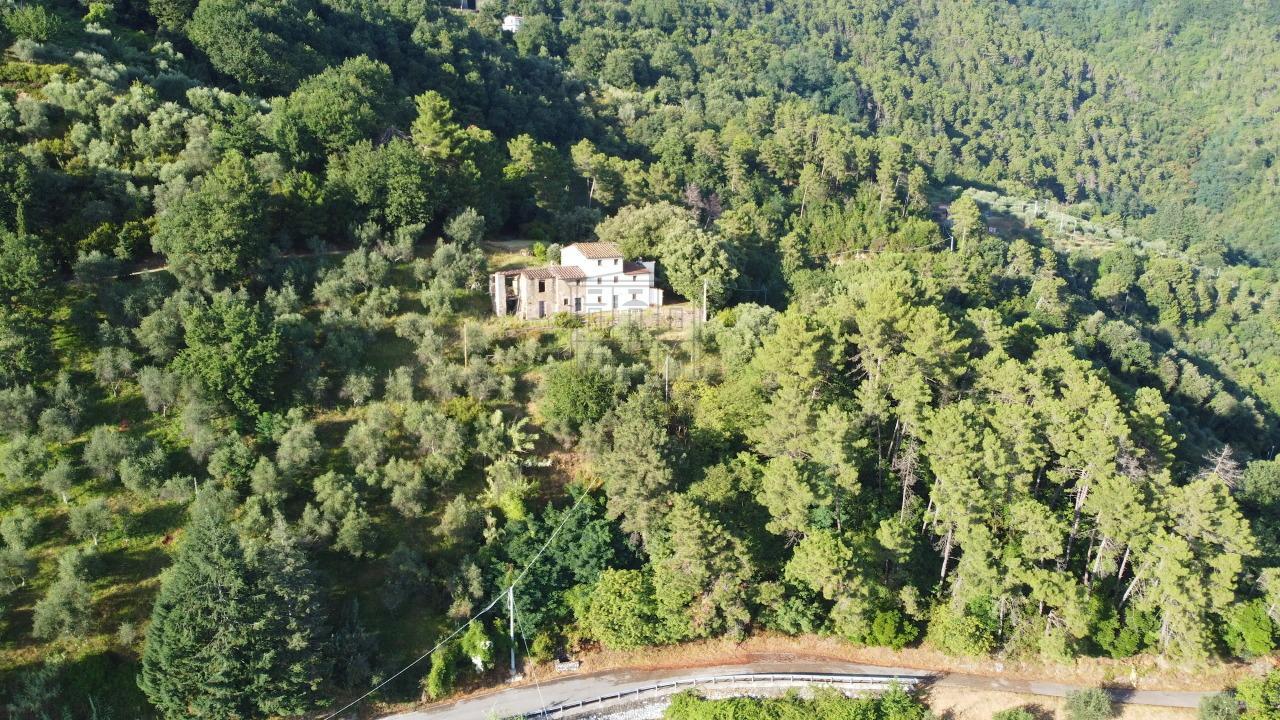 Casa colonica Lucca Ponte a Moriano IA00534 img 52