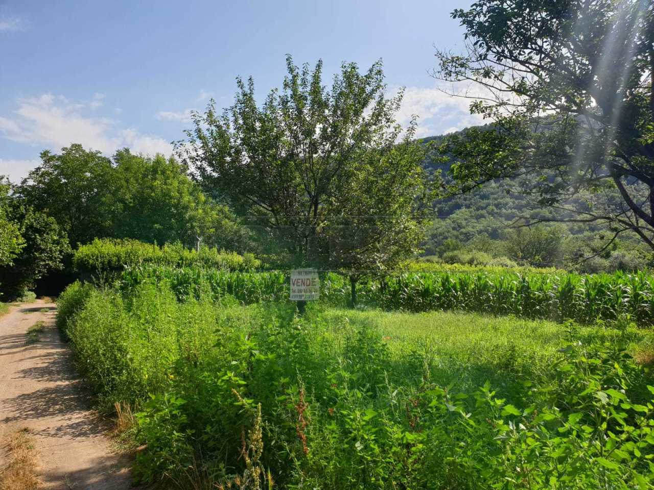 Agricolo - Seminativo a Lombardi, Mercato San Severino Rif. 10763692