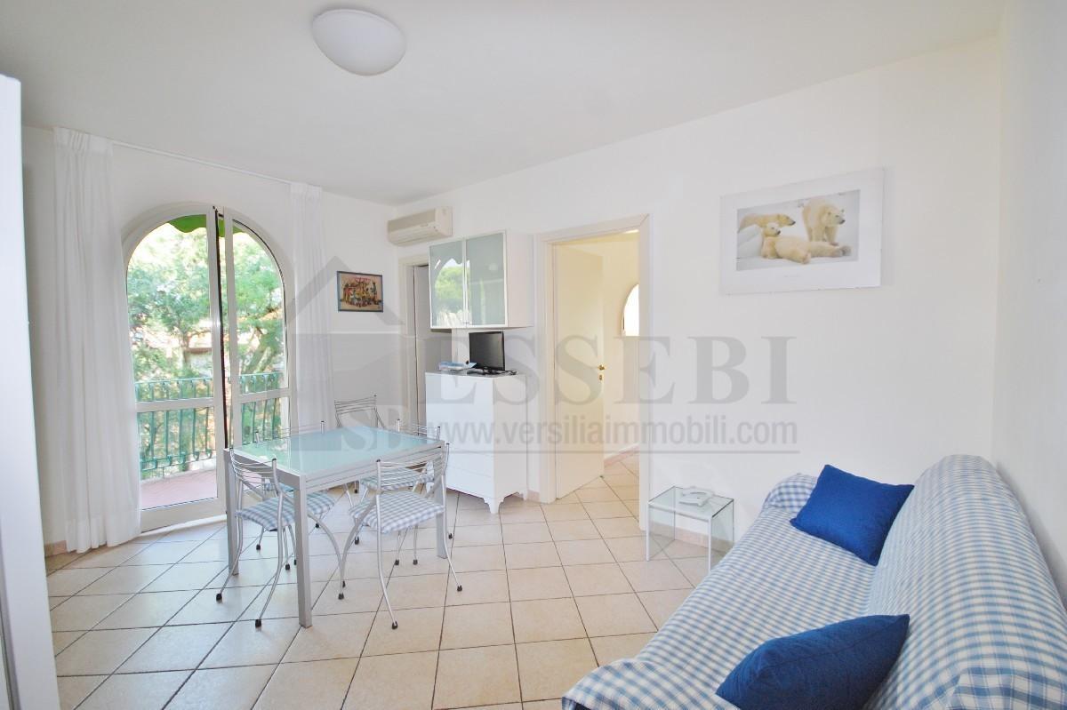 Appartamento in vendita a Pietrasanta, 3 locali, Trattative riservate | PortaleAgenzieImmobiliari.it