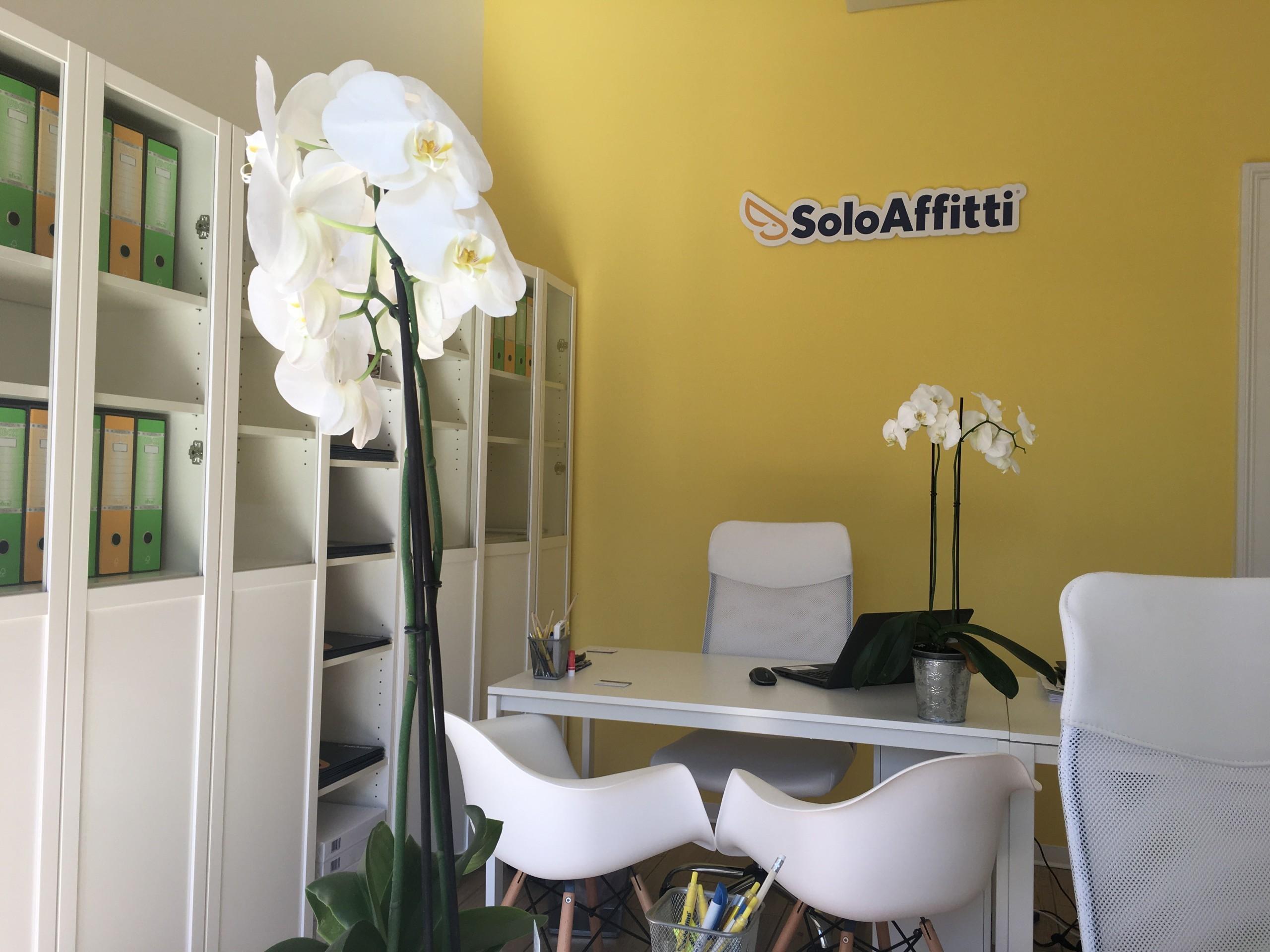 Agenzia immobiliare Solo Affitti Monza 2