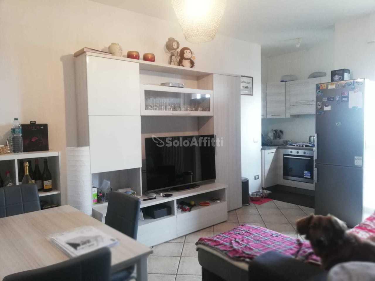 Appartamento in affitto a Orbassano, 2 locali, prezzo € 370   PortaleAgenzieImmobiliari.it