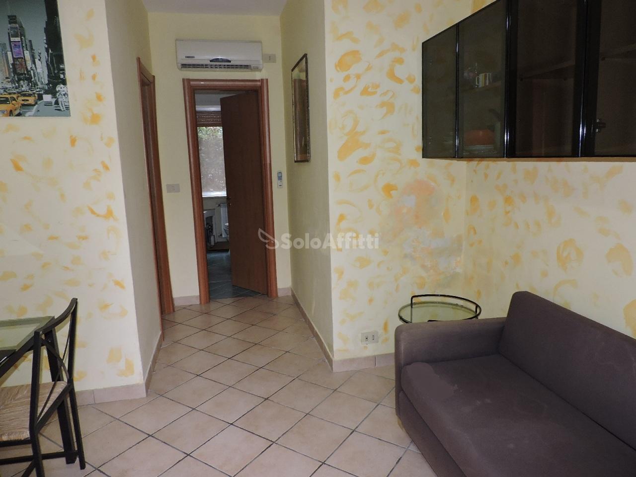Bilocale in buone condizioni arredato in affitto Rif. 8239095
