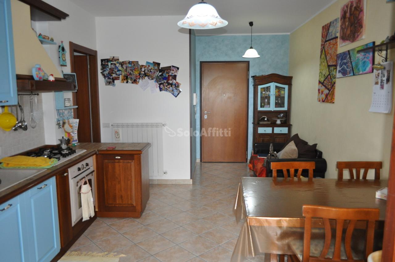 Trilocale in ottime condizioni arredato in affitto Rif. 10491813